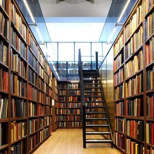 Библиотеки Ликино-Дулево